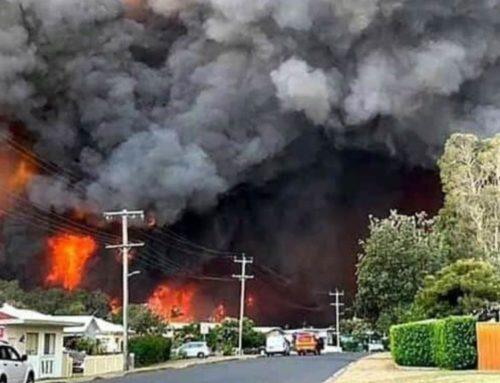 Messaggio del Superiore Provinciale Riguardo gli incendi boschivi in Australia
