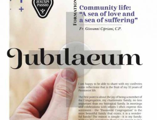 JUBILAEUM – Formation and Catechesis – 08