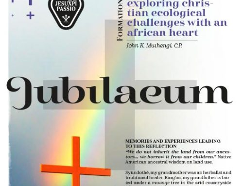 JUBILAEUM – Formation and Catechesis – 11
