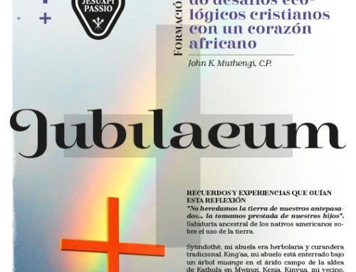 JUBILAEUM – Formación & Catequesis – 11